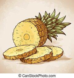 gravure, retro, tranches, ananas