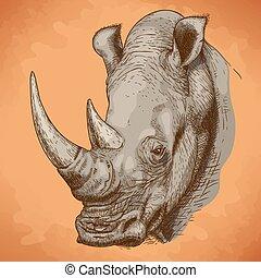 gravure, rhinocéros