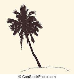 gravure, schets, ouderwetse , boompje, vector, palm, bounty