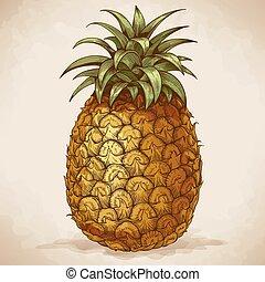 gravure, style, retro, ananas