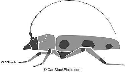 barbel beetle