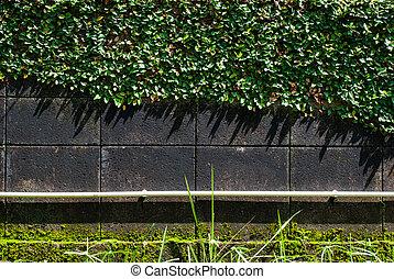 Gray brick wal