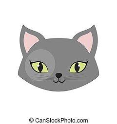 gray cat green eyes pet animal