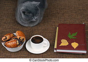 gray cat sitting near a white Cup of black coffee and rolls with poppy seeds