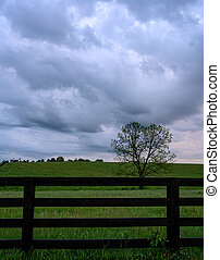 Gray Clouds Over Horse Pasture