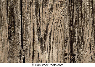 Gray color of a wooden texture. Abstract background