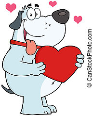 Gray Dog Holding Up A Red Heart