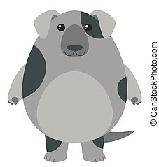 Gray dog on white background