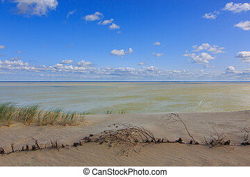 Gray Dunes trail of Curonian Spit National Park - Gray...