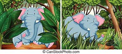 Gray elephants in deep forest