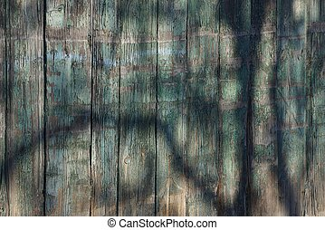 gray green wooden texture of planks in the fence in the shade