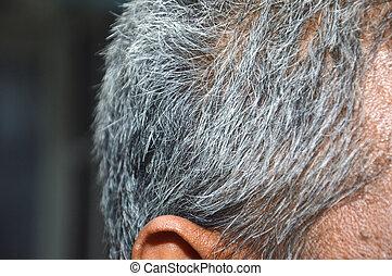 gray hair of old man