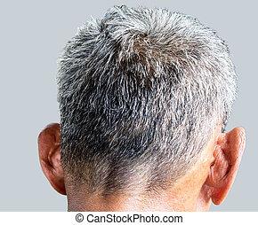 Gray hair thinning on senior man scalp