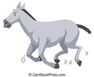 Gray horse running on white