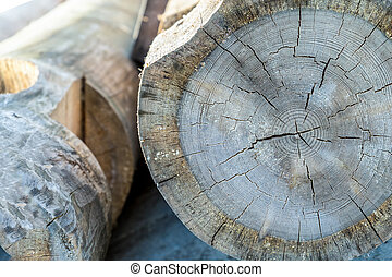 gray large logs old wood horizontal trunks end rasterized background rustic construction