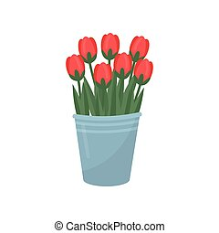 Gray metal bucket with red tulips. Bouquet of beautiful spring flowers. Garden plant. Floral theme. Flat vector design
