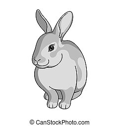 Gray rabbit.Animals single icon in monochrome style vector symbol stock illustration web.