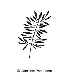 gray scale branch olive with leaves vector illustration