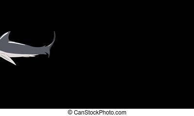 Gray Shark Swim Underwater. Animated Motion Graphic