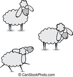Gray sheep - Three abstract gray sheep. Part Two. ...