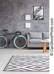 Gray sofa and stylish bicycle