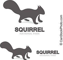 Gray squirrel logo - Vector logo design element with...