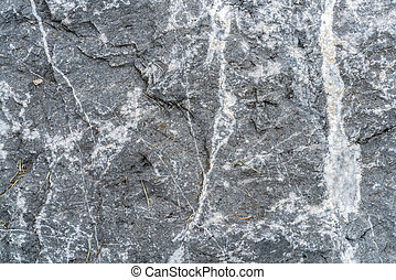 Gray stone texture background