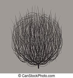 gray tumbleweed - isolated dry gray round tumbleweed