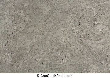 Gray vavovna burl design texture. Natural background closeup. Extremely high resolution photo.