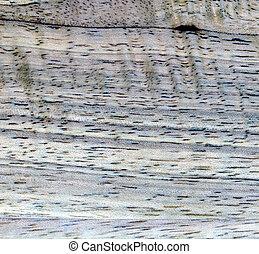 gray wood texture