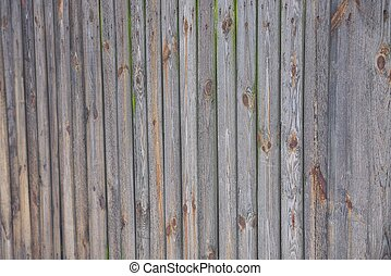 gray wooden texture of planks in the wall of the fence