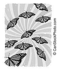 grayscale, remolino, grungy, mariposas