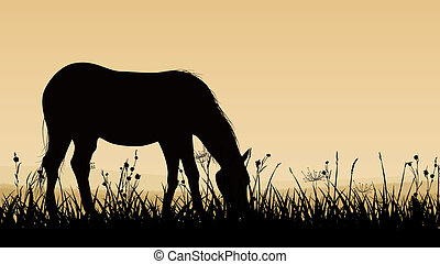 grazing., cheval, illustration