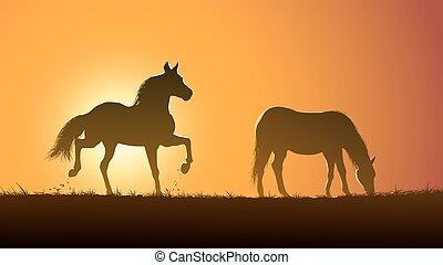 Grazing horses at sunset.