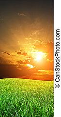 grean, pré, levers de soleil