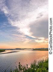 Great Blue Heron fishing on a sandbar during a beautiful Chesapeake Bay sunset at Blackwater Wildlife refuge in Maryland