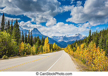 Great Bow River Canyon in September