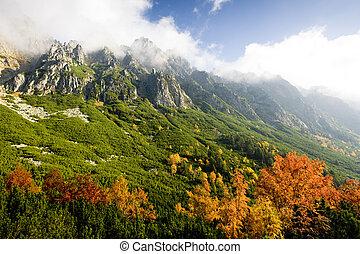 Great Cold Valley, Vysoke Tatry (High Tatras), Slovakia
