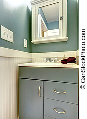 Great color solution for refreshing small bathroom
