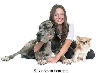 Great Dane, chihuahua and teenager