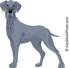 Great Danes Dog - Illustration of a Great Danes dog