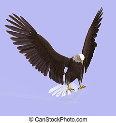 Great Eagle - huge eagle with feathers With Clipping Path