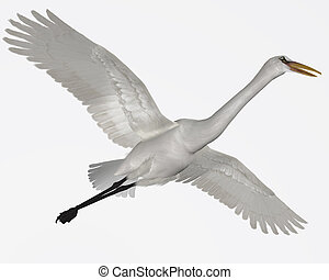 Great Egret - The Great Egret is a wading bird which is...