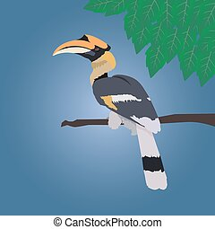 Great hornbill stand on the branch on blue background with leaf