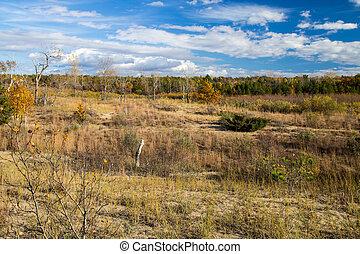 Great Lakes Coastal Habitat