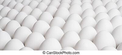 eggs - great many white new-laid eggs, horizontal photo