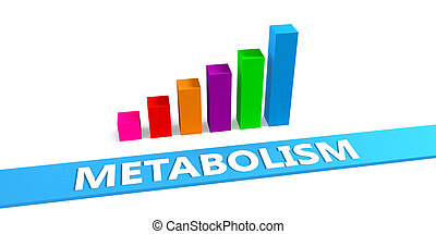 Great Metabolism Concept with Good Chart Showing Progress