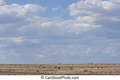 A scenic view of the great plains with clouds.