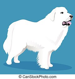 Great Pyrenees dog vector illustration