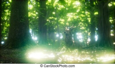 Great Red Deer in a Green Forest - great red deer stag in a...